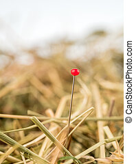 needle in a haystack. saying for challenge in managemen - a ...
