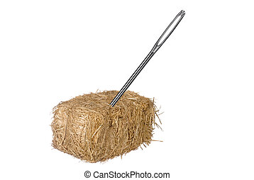 Needle in haystack - A needle is discovered in an obvious...