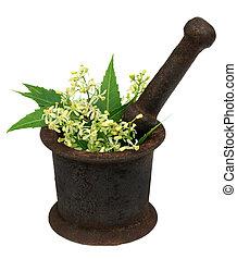 Neem leaves and flower on a vintage mortar - Medicinal neem...