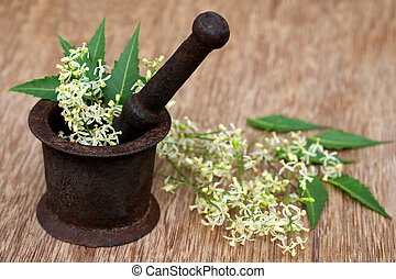 Neem leaves and flower on an old mortar - Medicinal neem...
