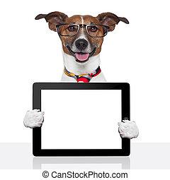 negócio, cão, pc tabela, ebook, almofada toque