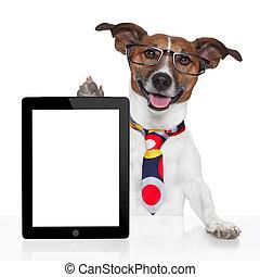 negócio, cão, pc tabela, ebook