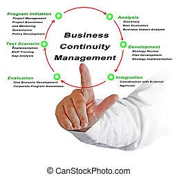 negócio, continuidade, gerência