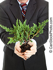 negócio, e, a, meio ambiente