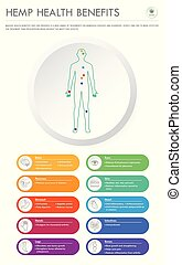 negócio, infographic, saúde, benefícios, vertical, cânhamo