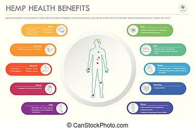 negócio, infographic, saúde, horizontais, benefícios, cânhamo