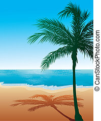 negen, strand, achtergrond