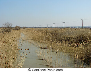 neglected irrigation canal