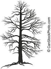negro, árbol, branchy, raíces
