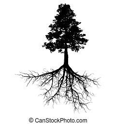 negro, árbol, con, raíces