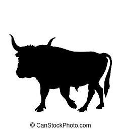 negro, aurochs, silueta, mostrar, forma