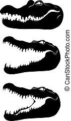 negro, cabeza, vector, crocodile., image.