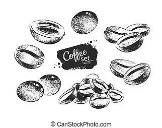 negro, café blanco, frijoles, ilustración