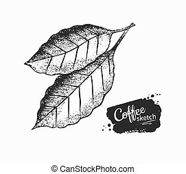 negro, café blanco, hojas, ilustración