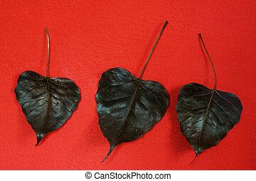 negro, hojas, en, un, pared roja