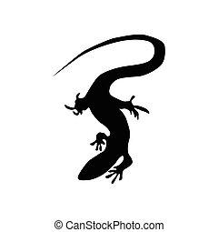 negro, lagarto, silueta