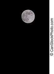 negro, Lleno, cielo, luna