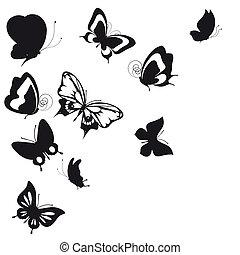 negro, mariposa, aislado, en, un, blanco