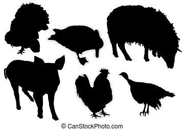 negro, siluetas, de, animales domésticos, y, aves