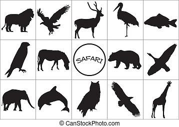 negro, siluetas, de, animals.