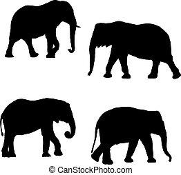 negro, siluetas, de, dos elefantes