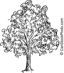 negro y blanco, bosquejo, de, un, árbol., vector, ilustración