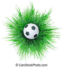 negro y blanco, pelota del fútbol, en, grass.