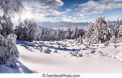nehéz, hegyek, gyalogló, tél, után, hóesés