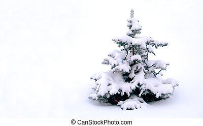 neigé, arbre