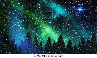neige, étoilé, tomber, noël, ciel, nuit