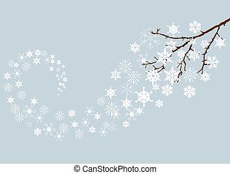 neige, branche