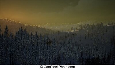 neige, brouillard, montagne