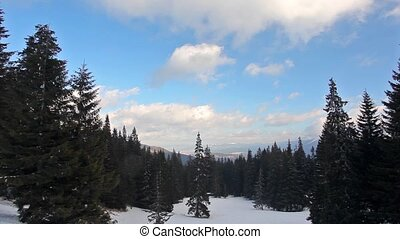 neige-couvert, parc, paysage hiver