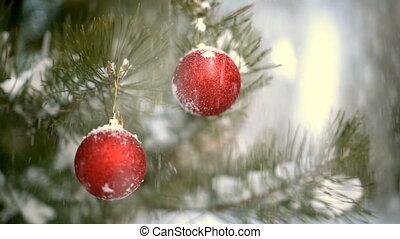 neige, décoration, branche, slowmotion, gouttes, noël