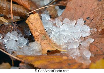 neige fondue