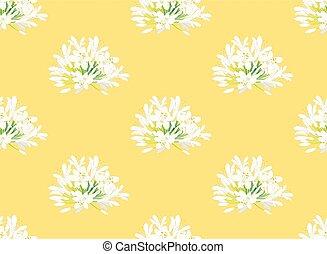 neige, illustration, arrière-plan., vecteur, agapanthus, jaune, blanc