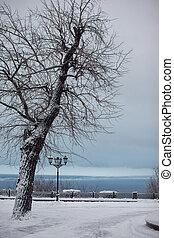 neige, park., hiver, jour