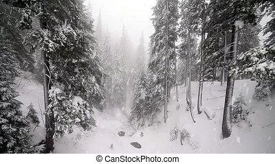 neige, tempête neige, hiver, orage