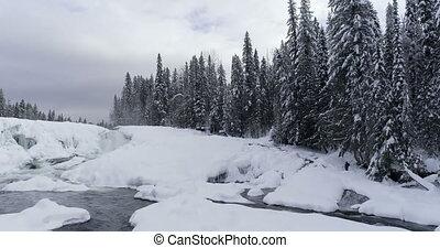 neigeux, par, forêt, écoulement, ruisseau, 4k