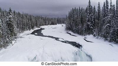 neigeux, pendant, hiver, par, forêt, écoulement, ruisseau, 4k