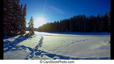 neigeux, pendant, paysage hiver, 4k