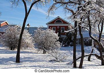 neigeux, solitaire, forest., milieu, maison