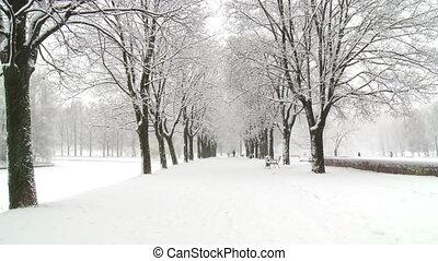 neigeux, temps