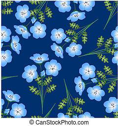 Nemophila Baby Blue Eyes Flower on Indigo Background
