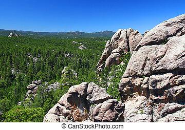 nemzeti, black hegy, erdő