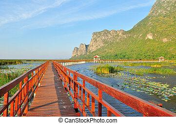 nemzeti, gyalogjáró, tó, liget