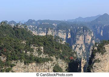 nemzeti park, zhangjiajie, erdő