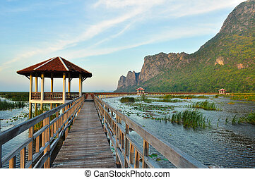 nemzeti, tó, liget, bridzs