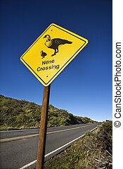 \'Nene Crossing\' road sign in Maui, Hawaii.
