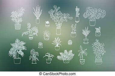 neobvyklý, houseplants, ikona, in line, umění, style.
